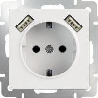 mechanism_white socket with usb and protection